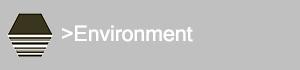Environment Pillar